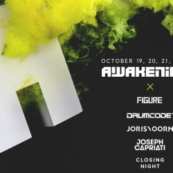 Awakenings www.hammarica.com techno